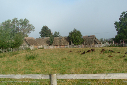 The Danelaw village at the Museum of Farming, Murton Park, York.